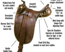 Saddle Equipment