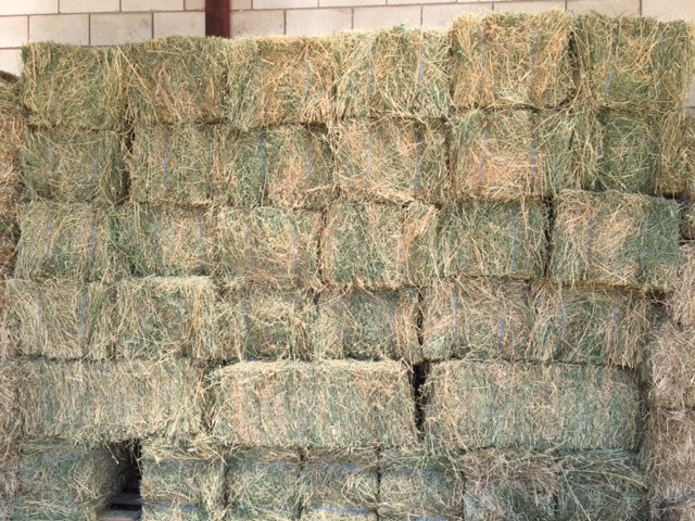 Small Lucerne Bales